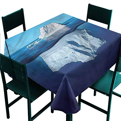 - DONEECKL Dust-Proof Tablecloth Nature Siberia Cold Snow North Pole and Durable W54 xL54