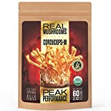 Cordyceps Mushroom Extract Powder by Real Mushrooms – Certified Organic – 60g Bulk Cordyceps Mushroom Powder – Perfomance – Recovery – All-Day Energy – Perfect for Shakes, Smoothies, Coffee and Tea Review