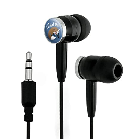 Amazon Com Graphics More Brown Fox What The Pun Funny Novelty In Ear Earbud Headphones Electronics