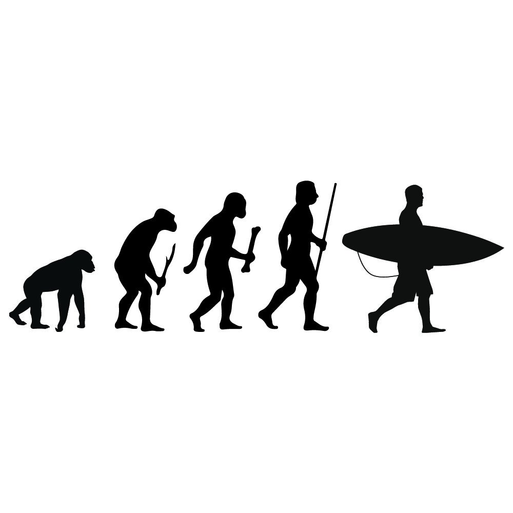 Amazon.com: azutura Surfing Evolution Wall Sticker Surfboard Wall Decal Kids Bedroom Surf Home Decor available in 5 Sizes and 25 Colours Medium Ocean Blue: ...