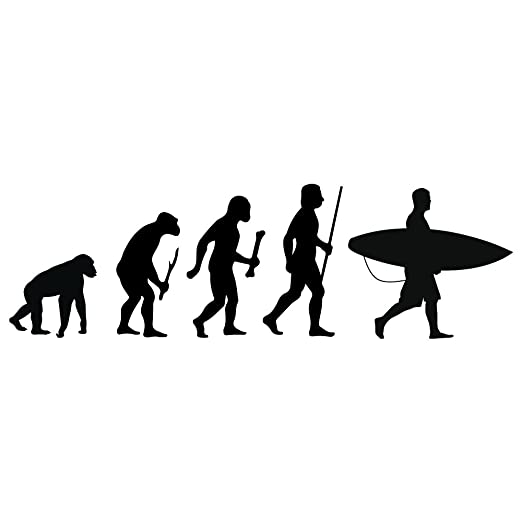 Amazon.com: azutura Surfing Evolution Wall Sticker Surfboard Wall Decal Kids Bedroom Surf Home Decor available in 5 Sizes and 25 Colours Small Strawberry ...
