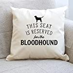 Affable Hound Reserved for The Bloodhound - Cushion Cover - Dog Gift Present 6