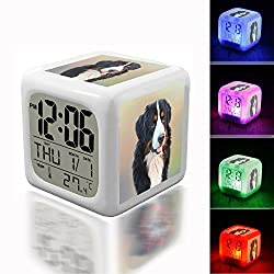 Digital Alarm Thermometer Night Glowing Cube 7 Colors Clock LED Customize the pattern 108.Dog, Bernese Mountain Dog, Berner
