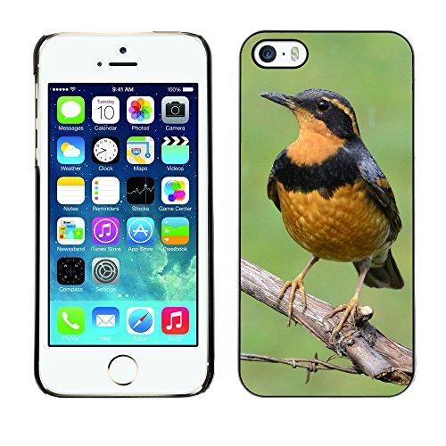 Premio Sottile Slim Cassa Custodia Case Cover Shell // F00031340 Thrush oiseau // Apple iPhone 5 5S 5G
