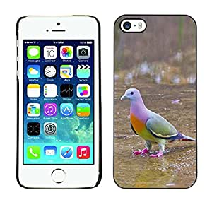 Be Good Phone Accessory // Dura Cáscara cubierta Protectora Caso Carcasa Funda de Protección para Apple Iphone 5 / 5S // tropical bird dove green ornithology