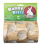 Wesco Pet Bunny Blast (New) - Best Reviews Guide