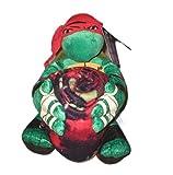 Teenage Mutant Ninja Turtles Raphael Throw Blanket and Pillow Set (40'x50')