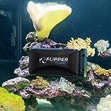 FL!PPER Flipper Cleaner Float - 2-in-1 Floating