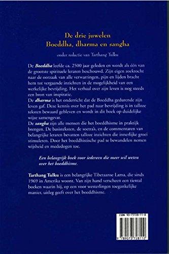 De drie juwelen, Boeddha, dharma & sangha: Amazon.es: Tulku ...