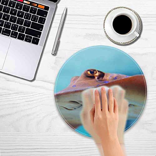 Mouse Pad Round Mouse Pad Animal Aqua Aquarium Colorful Diving Fish Marine #21917 Full-Body 200mm3mm