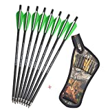 """12 Pack Crossbow Carbon Arrows 16"""" 17"""" 18"""" 20"""" 22"""" Lightweight Crossbow Bolt Fletched 4 Inch Vane with Replaced 3 Blade Broadheads"""