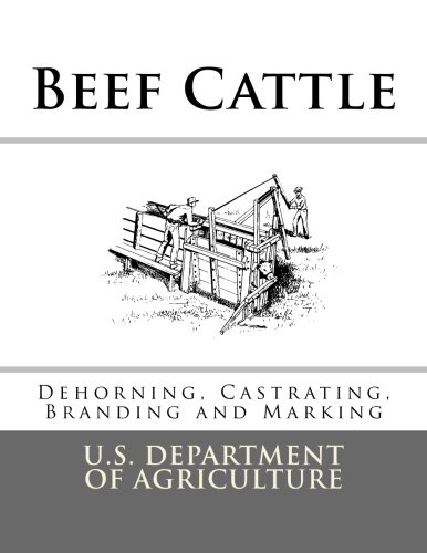 Beef Cattle: Dehorning, Castrating, Branding and Marking (Farmers' Bulletin)