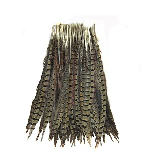 KOLIGHT Set of 10pcs Natural Dyed Pheasant Tails Feathers 12-14 inch DIY Decoration (Natural)