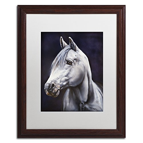 Trademark Fine Art White Arabian Stallion by Jenny Newland, White Matte, Wood Frame 16x20-Inch by Trademark Fine Art
