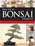 Practical Bonsai Projects: Create 23 Superb Trees Step-by-Step: All you need to learn about creating and displaying miniature trees and shrubs, shown in ... with more than 300 color photographs