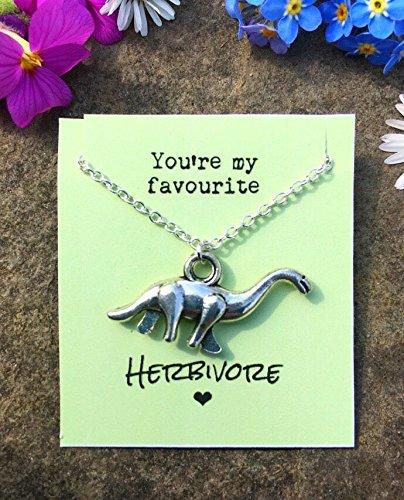 Favourite Herbivore Quote Dinosaur Necklace Gift For Vegetarian Vegan Birthday Present Amazoncouk Kitchen Home