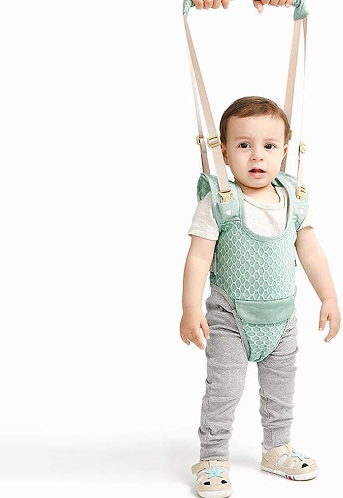 Caminante del bebé del niño que recorre Handheld Assistant se ...
