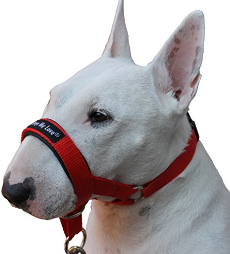 Dog Head Collar Halter Red 6 Sizes (M: 8.25