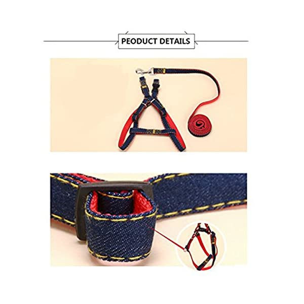 BVAGSS Soft Mesh Puppy Vest Harness Adjustable Pet Lead Chest Walking Leash for Dog Cat JA001 M, Red