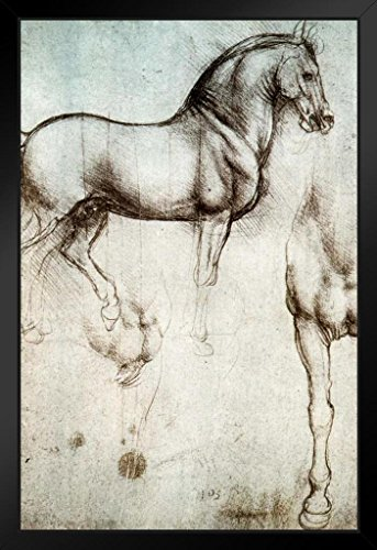 - Leonardo da Vinci Study of Horses 1490 Drawing Sketch Diagram Framed Poster 14x20 inch