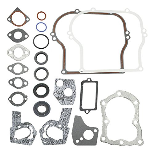 Briggs & Stratton 495603 Engine Gasket Set Replaces 397145, 297615