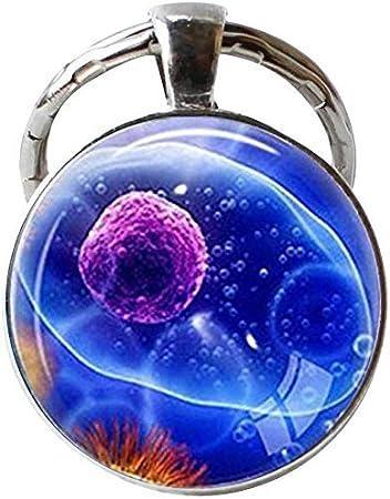 Virus, llavero de virología, joyería, virus, microbiología, regalo de ciencia, microscópico, vista de un virus, arte: Amazon.es: Hogar