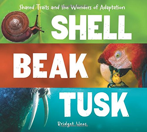 Download Shell, Beak, Tusk: Shared Traits and the Wonders of Adaptation pdf