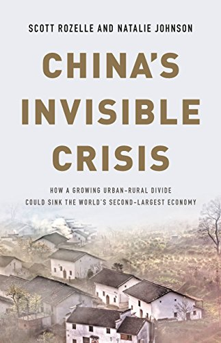 China's Invisible Crisis: How a Growing Urban-Rural Divide Could Sink the World's Second-Largest Economy (English Edition)