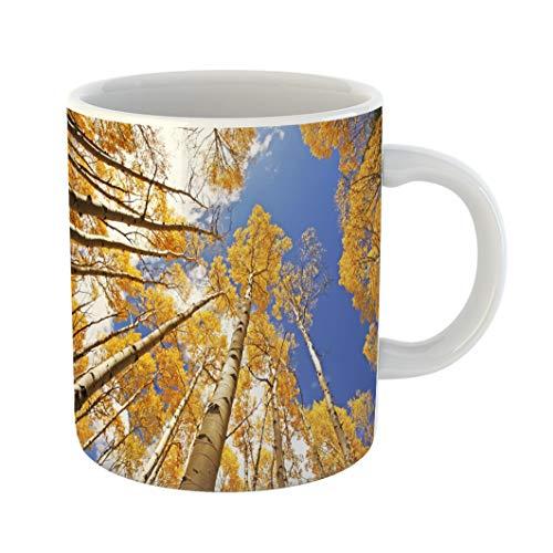 Emvency Coffee Tea Mug Gift 11 Ounces Funny Ceramic Aspen Trees Fall Color San Juan National Forest Colorado Usa Gifts For Family Friends Coworkers Boss Mug