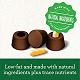 GREENIES PILL POCKETS for Dogs Capsule Size Natural