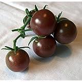 9GreenBox Black Cherry Tomato 25 Seeds - Sweet & Juicy