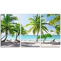 Vakiko Murales Pared Fondo estirado Impresiones en Lienzo Árbol de Coco para tu Sala de Estar decoración del hogar ecológico Set de Trabajo de Arte Sin Marco(3 Piezas)