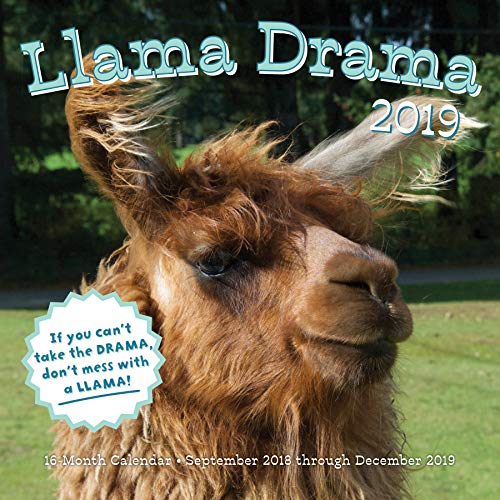 - Llama Drama 2019: 16-Month Calendar - September 2018 through December 2019