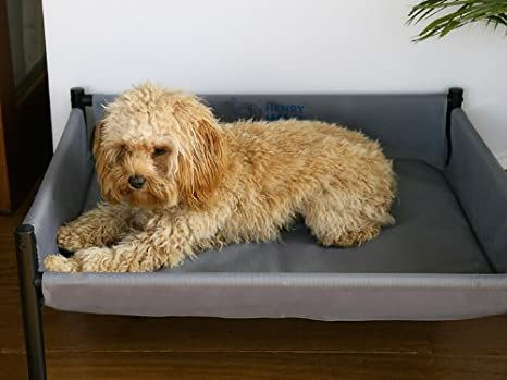 Henry WAG Elevated perro cama (tamaño mediano – 70 x 55 x 30 ...