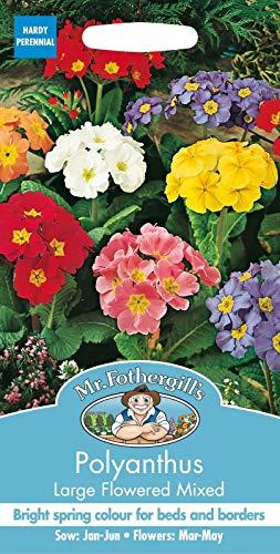 mr fothergills  Flower  Polyanthus Large Flowered Mixed  100 Seeds