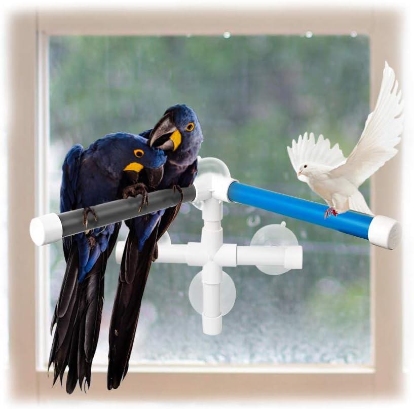 FurPaw Perchas Pájaros, Loros Plástico Columpio Plataforma para Ducha Juguestes Pajaros Mascotas Perchas con 4 Ventosas