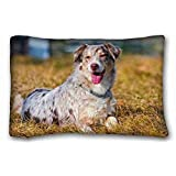 Generic Personalized ( Animals australian shepherd tongues grass holiday dog ) Custom Cotton & Polyester Soft Rectangle Pillow Case Cover 20x30 inches (One Side) suitable for Twin-bed PC-Purple-31561