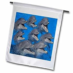 Florene Underwater Animals - A Pod Of Laughing Dolphins - 18 x 27 inch Garden Flag (fl_80229_2)