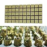 50 Cubes Rockwool/Stonewool Grow Cubes,Hydroponic Grow Media...