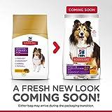 HillS Science Diet Adult Sensitive Stomach & Skin Dog Food, Chicken Meal & Barley Recipe Dry Dog Food, 30 Lb Bag