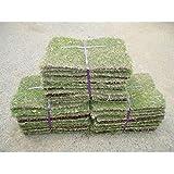 相馬グリーン 姫高麗芝 3束 高麗芝の選抜種 高さ35×幅25cm