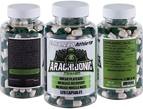 Enhanced Athlete Arachidonic Acid Synthesis product image