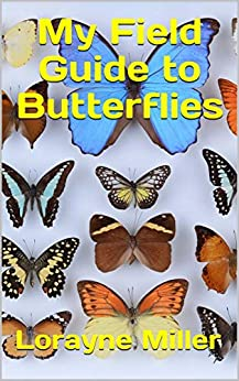 My Field Guide to Butterflies by [Miller, Lorayne]