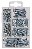 The Hillman Group 591519 Small Small Wood Screw Assortment, 195-Pack