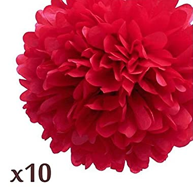 WOM-HOPE® 10 Pack 10 Inches Tissue Paper Pom Pom Flower Ball Pom-poms - Wedding Party Supplies Decorations Birthday Parties and Baby Showers Party Decorations (Red (10-inch Diameter))