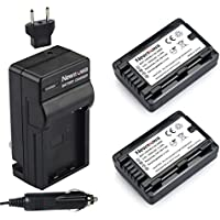 Newmowa VW-VBY100 Battery (2-Pack) and Charger kit for Panasonic HC-V110 HC-V110K HC-V110G HC-V201 HC-V201K Digital Camera