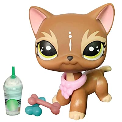 Judylovelps Elk Brown Short Hair Cat Custom OOAK Kitten Green Spot Eyes with lps Accessories Collar Drinks Kids: Home & Kitchen