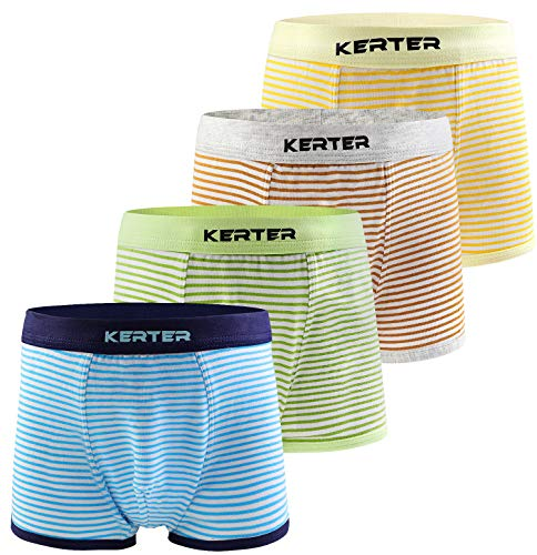 Pattern Worsted - Auranso Little Boys Toddlers Cotton Boxer Briefs Underwear Dinosaur Pattern 4/6 Pack 2-11Y