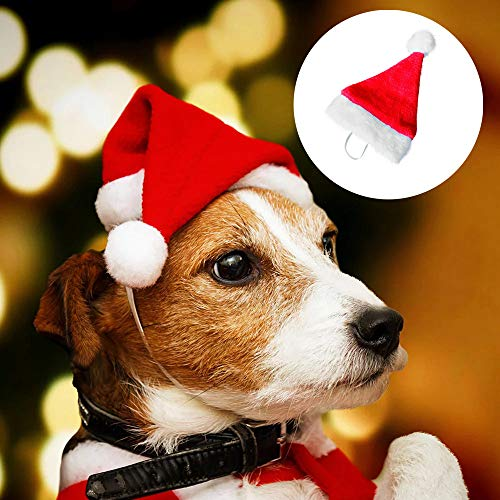Glumes Christmas Cat Dog Santa Claus Hat and Collar CharmWith Bells Pet Santa Headwear for Cats & Small Dogs Party Costume Set