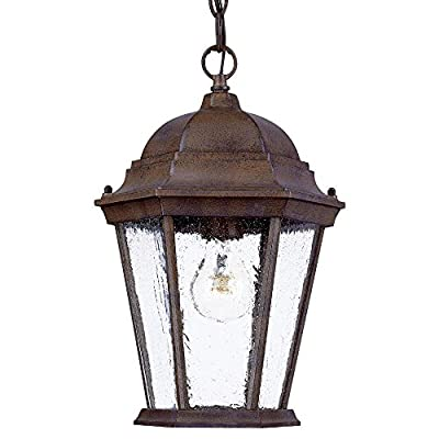 Acclaim 5206BW/SD Richmond Collection 1-Light Outdoor Light Fixture Hanging Lantern, Burled Walnut